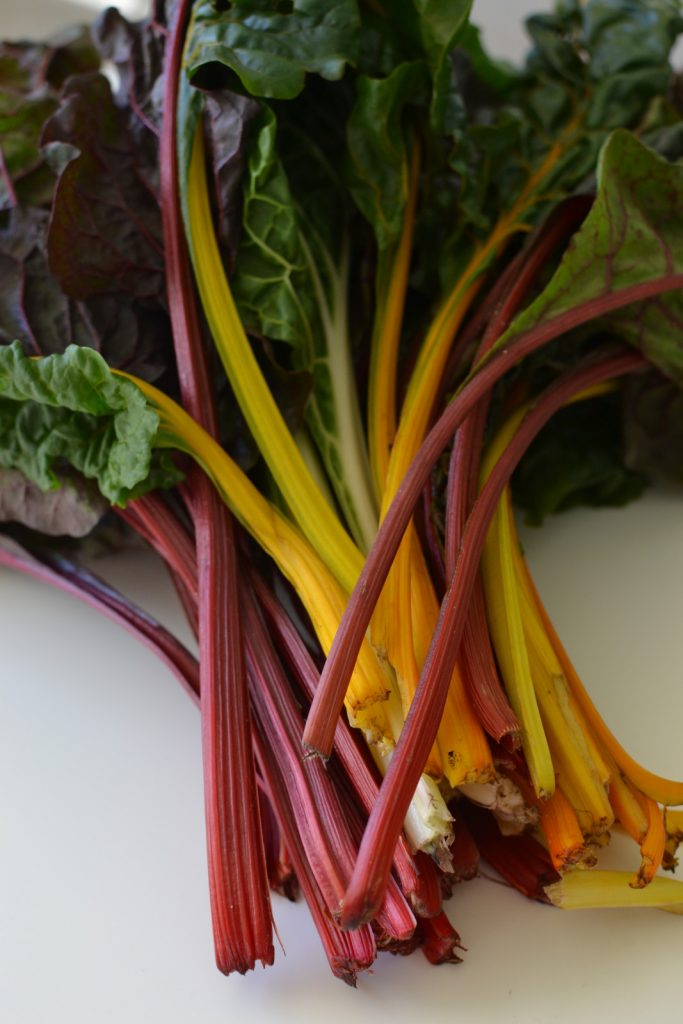 Yep, I came home from the farmer's market and took a picture of my swiss chard. Guilty.